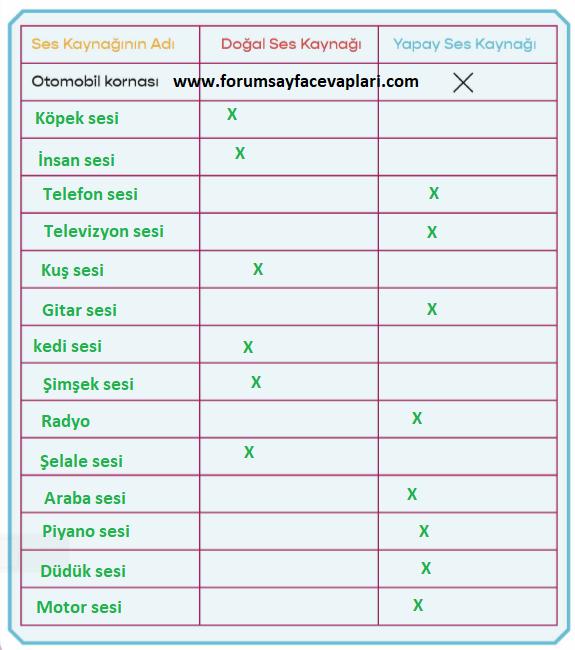 3. Sinif Fen Bilimleri Calisma Kitabi Meb Yayinlari Sayfa 81 Cevaplari